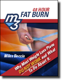 fatburn preview Free 48 Hour Fat Burn Solution Guide