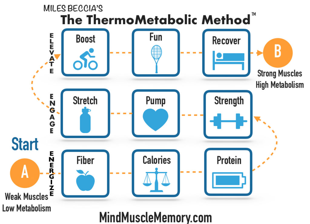 mind muscle memory the thermometabolic method framework photo v3.4 ThermoMetabolic System Package