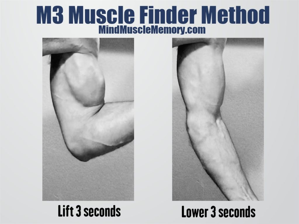 M3 Muscle Finder Method poster The M3 Muscle Finder Method