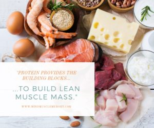 Protein provides building blocks to build lean muscle Official M3 Equalizer System Of Mind Muscle Memory