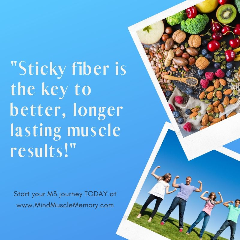 Sticky fiber is the key to better longer lasting muscle results How Sticky Fiber Will Impact Your Muscle Results
