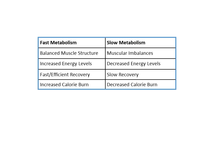 Fast vs. Slow Metabolism M3 Ignite Your Metabolism How to Ignite Your Fast Metabolism