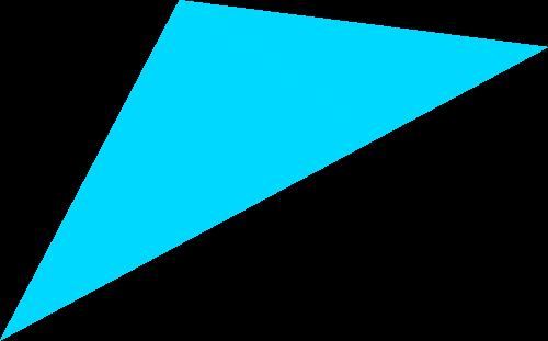 triangle 1 Virtual Fitness Coach