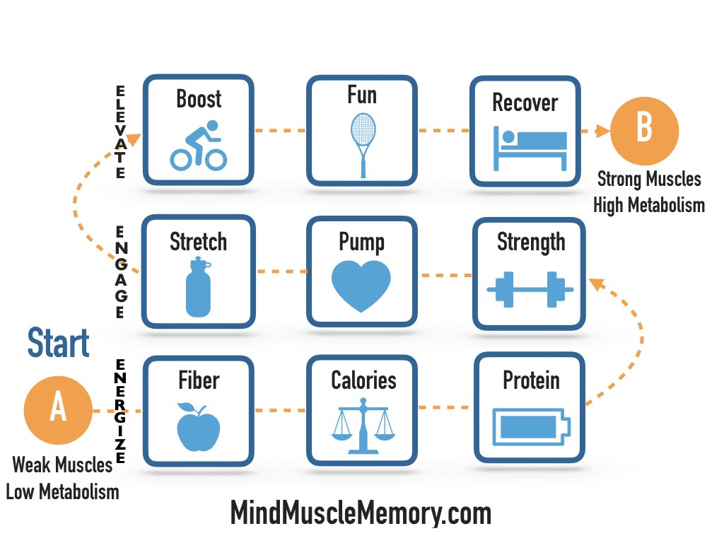 mind muscle memory fit diet method photo jpeg1.2 FitDiet Challenge