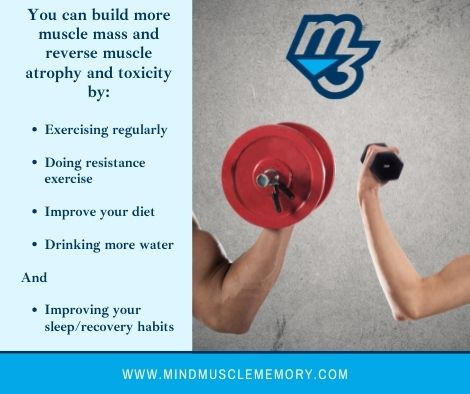 You can build more muscle mass with M3 Curation Policy